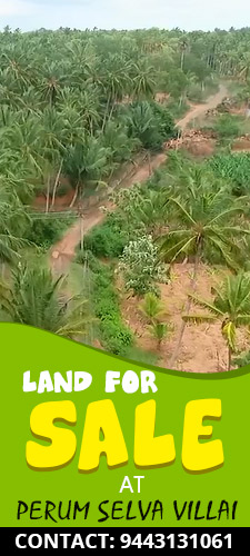 2.70 Acres Agricultural Land near Government Medical College - Nagercoil