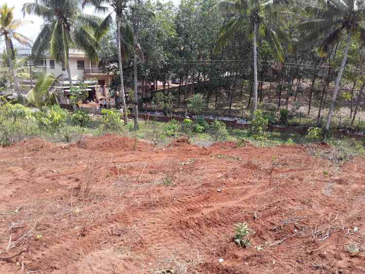 realKK com - Kanyakumari District's Real Estate and Property Mart